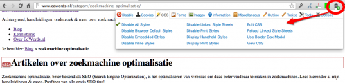 SEO Chrome extensie - Web Developer Toolbar voorbeeld